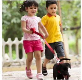 deal of the day Kid's essential savedealsindia